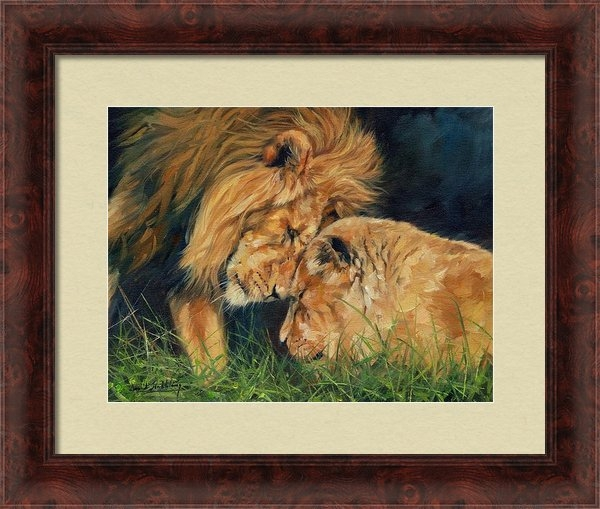 David Stribbling - Lion  Love Print