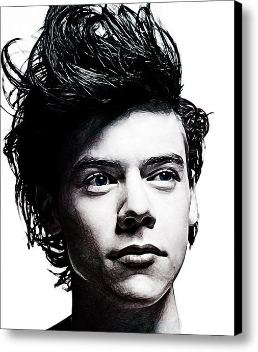 The DigArtisT - Harry Styles Print