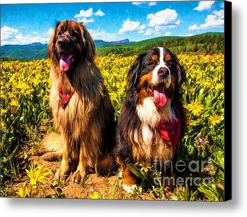 Gary Whitton - Bernese Mountain Dog and ... Print
