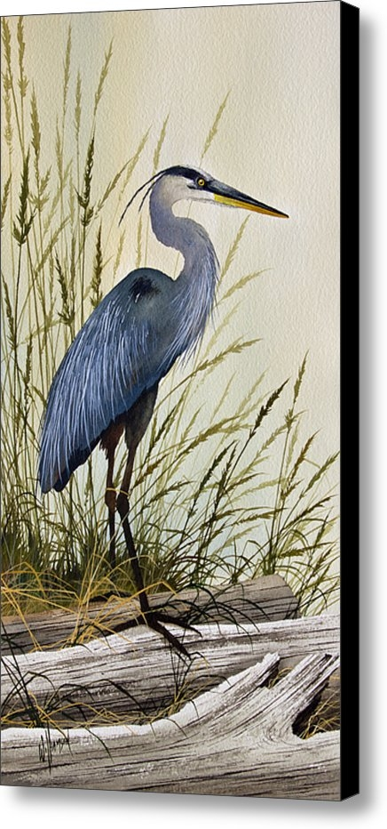 James Williamson - Great Blue Heron Splendor Print