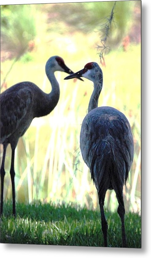 Jennifer Russo - Kissing Cranes Print