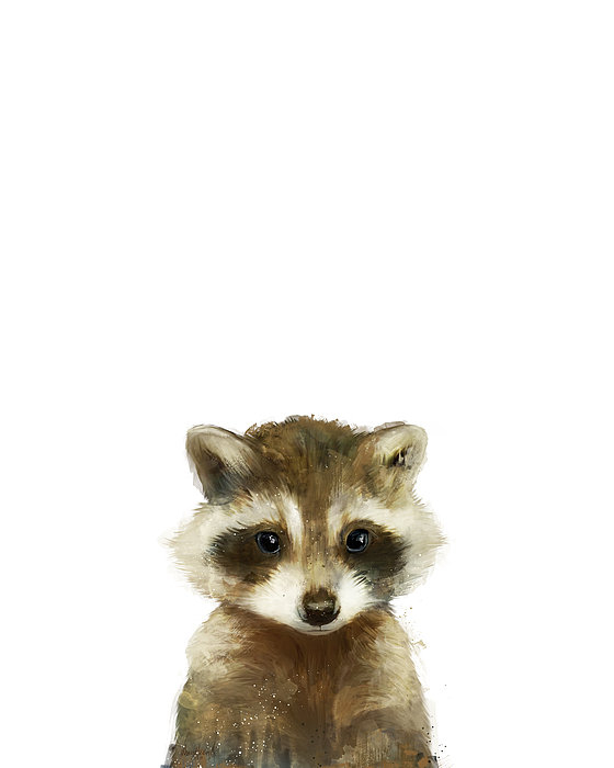 Amy Hamilton - Little Raccoon Print